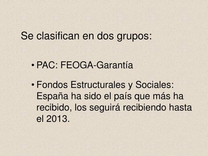 Se clasifican en dos grupos: