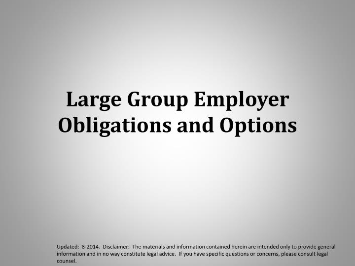 Large Group Employer Obligations and Options