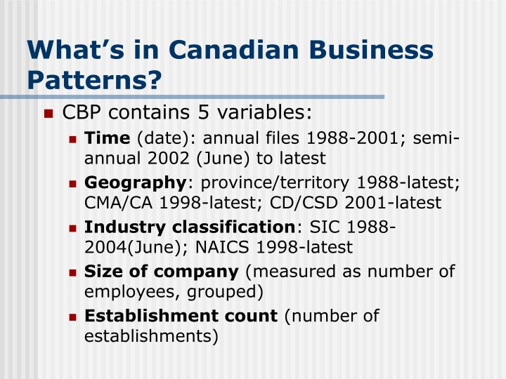 What's in Canadian Business Patterns?