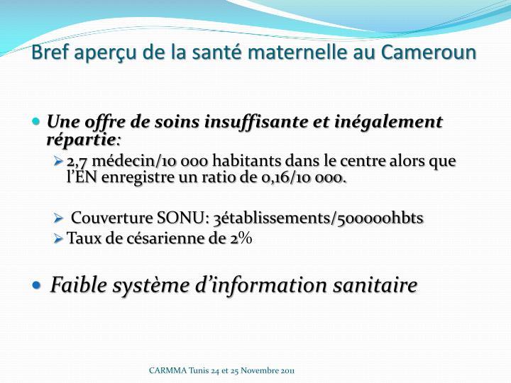 Bref aperçu de la santé maternelle au Cameroun