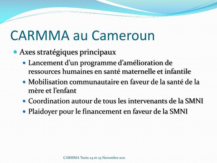 CARMMA au Cameroun
