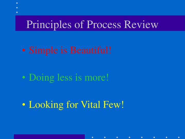 Principles of Process Review