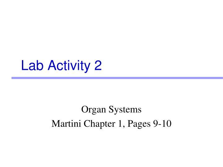 Lab Activity 2