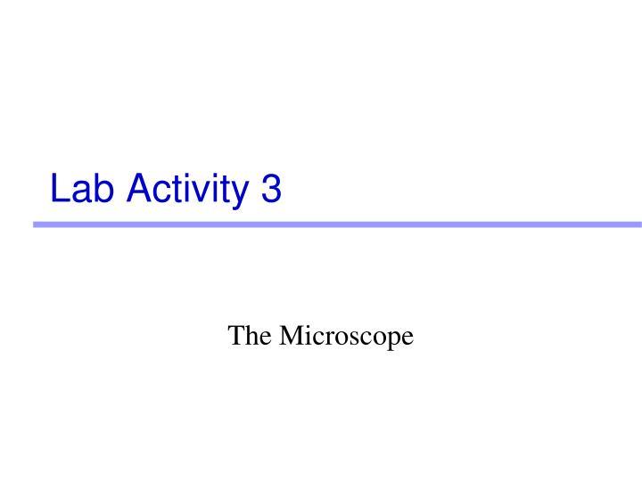Lab Activity 3