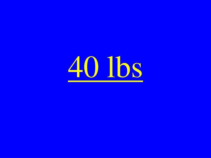 40 lbs