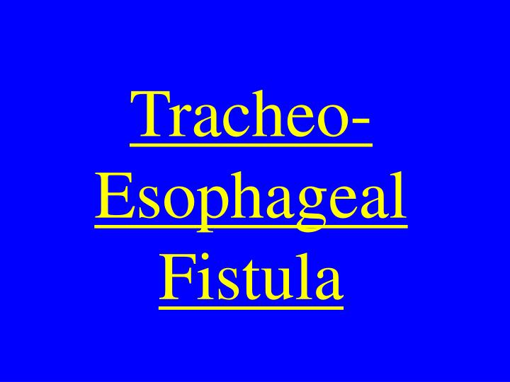Tracheo-