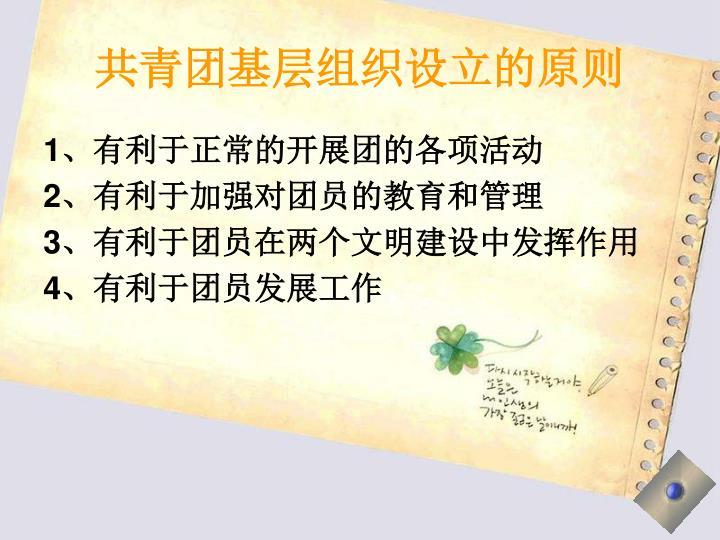 共青团基层组织设立的原则