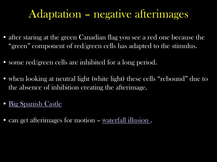 "after staring at the green Canadian flag you see a red one because the ""green"" component of red/green cells has adapted to the"