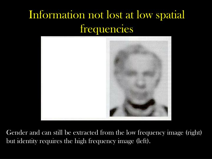 Information not lost at low spatial frequencies