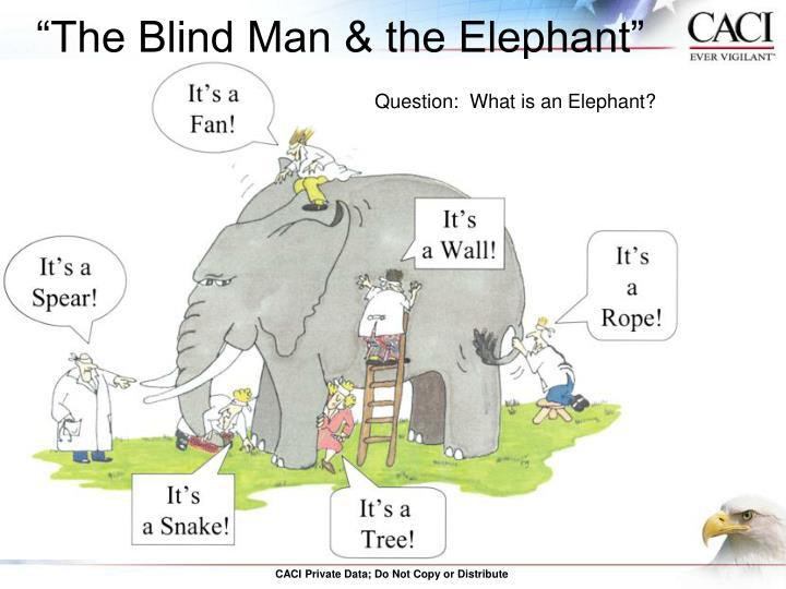 """The Blind Man & the Elephant"""