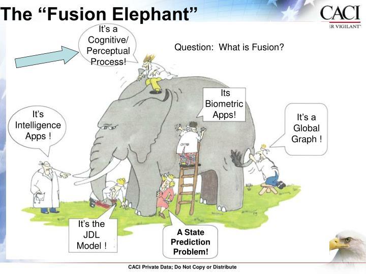 "The ""Fusion Elephant"""