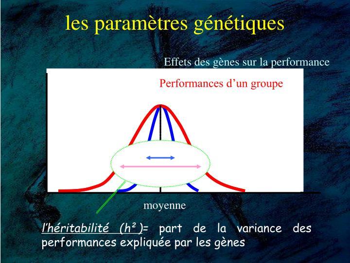 Effets des gènes sur la performance