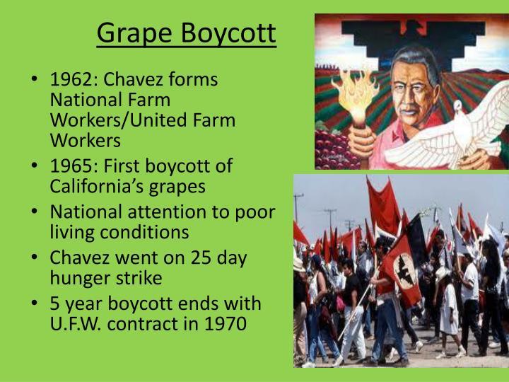 Grape Boycott