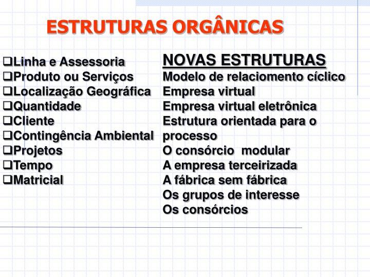 ESTRUTURAS ORGÂNICAS