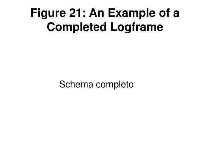 Figure 21: An Example of a Completed Logframe