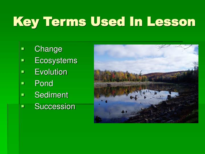Key Terms Used In Lesson