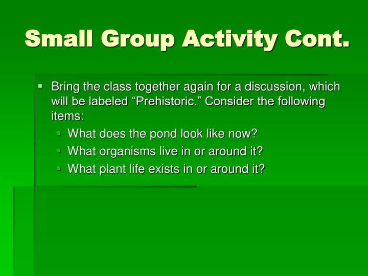 Small Group Activity Cont.
