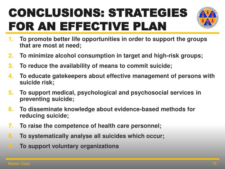 CONCLUSIONS: Strategies FOR AN EFFECTIVE PLAN