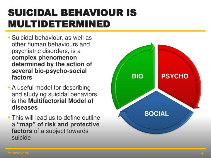 Suicidal Behaviour is Multidetermined