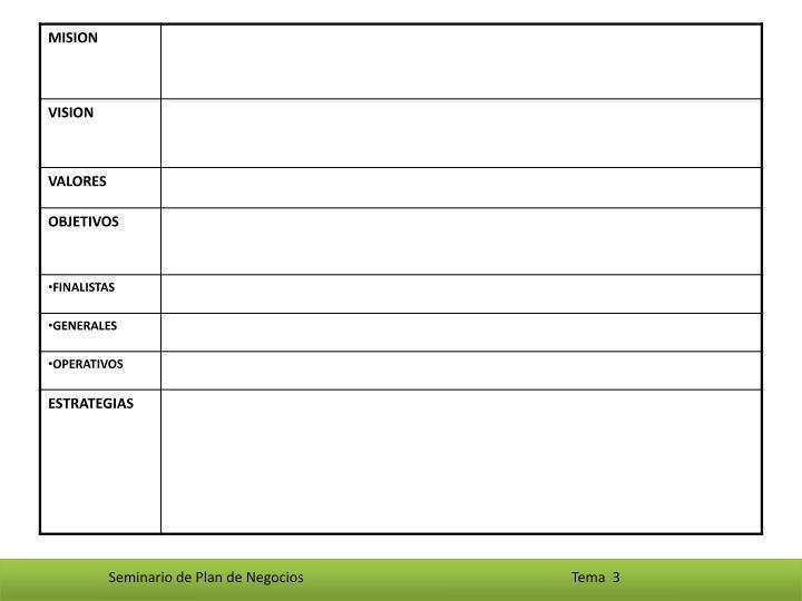 Seminario de Plan de Negocios                                                                             Tema  3