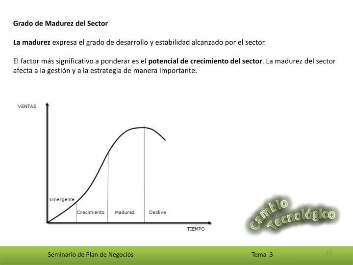 Grado de Madurez del Sector