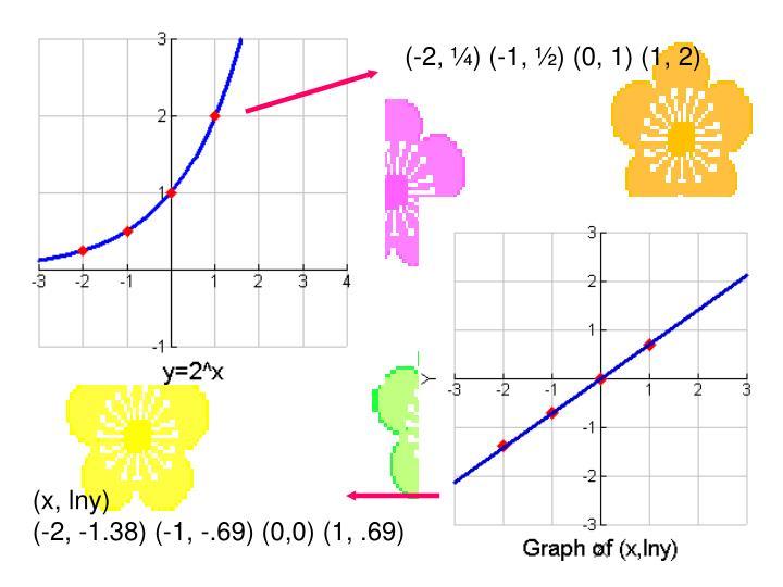 (-2, ¼) (-1, ½) (0, 1) (1, 2)
