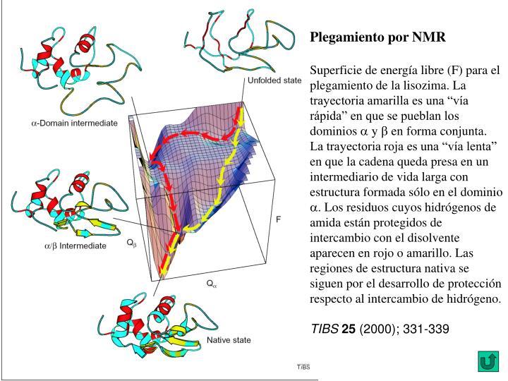 Plegamiento por NMR