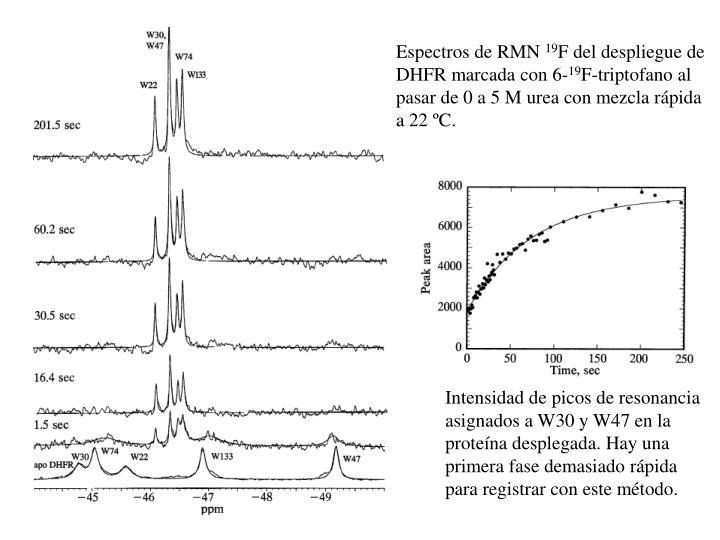 Espectros de RMN