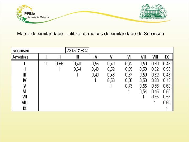Matriz de similaridade – utiliza os índices de similaridade de Sorensen