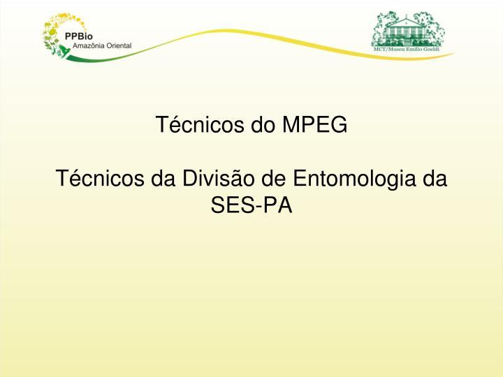 Técnicos do MPEG