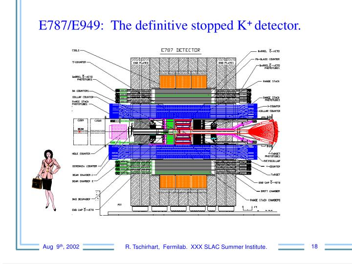 E787/E949:  The definitive stopped K