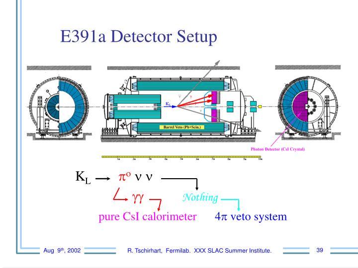 E391a Detector Setup