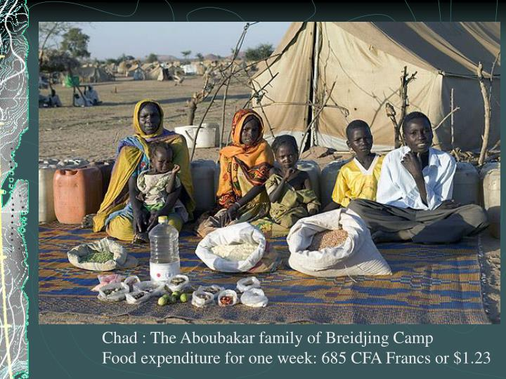 Chad : The Aboubakar family of Breidjing Camp