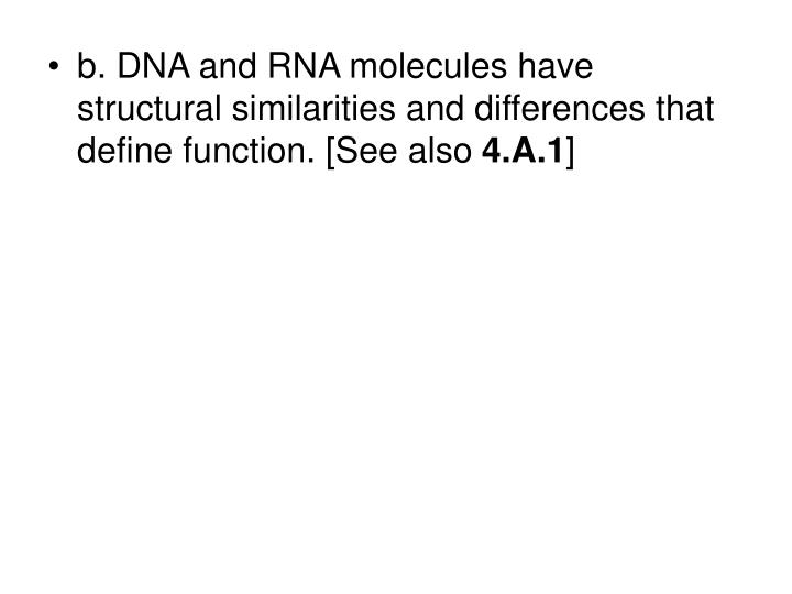 b. DNA and RNA molecules have structural similarities and differences that define function. [See also