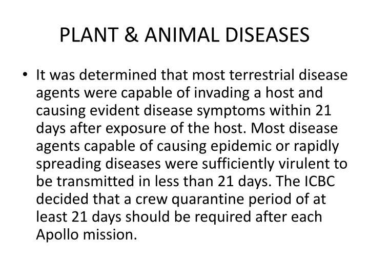 PLANT & ANIMAL DISEASES