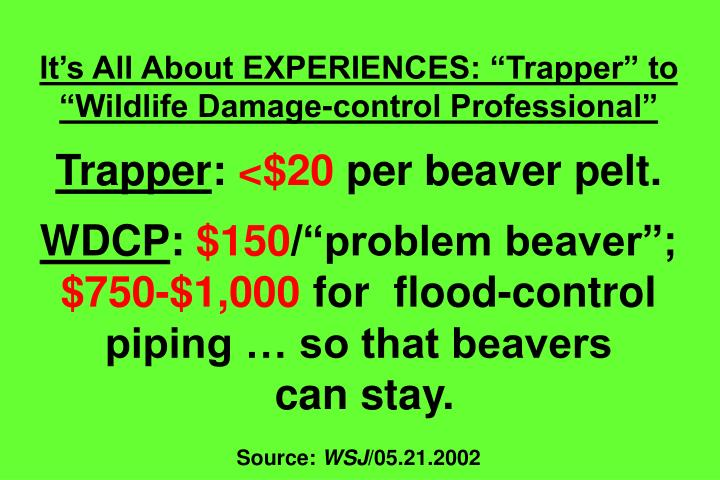 "It's All About EXPERIENCES: ""Trapper"" to ""Wildlife Damage-control Professional"""