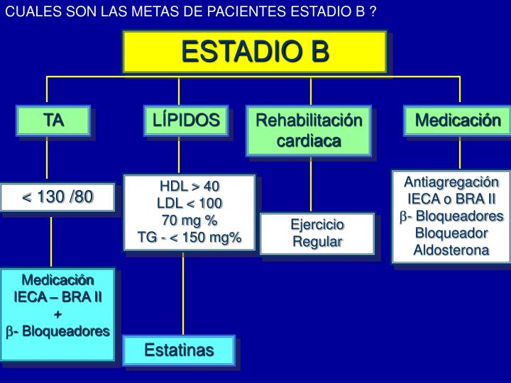 CUALES SON LAS METAS DE PACIENTES ESTADIO B ?