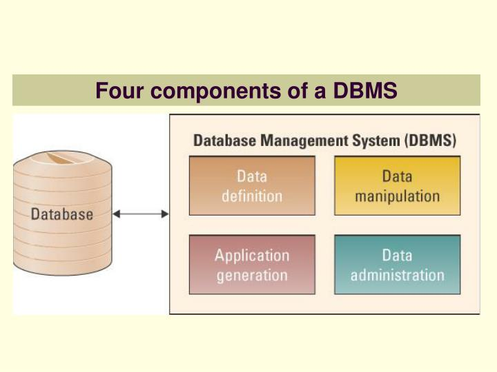 Four components of a DBMS
