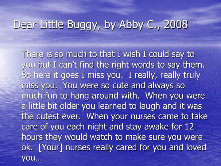 Dear Little Buggy, by Abby C., 2008