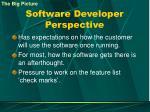 software developer perspective