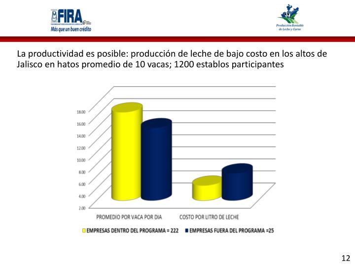 La productividad es posible: producción de leche de bajo costo en los altos de Jalisco en hatos promedio de 10 vacas; 1200 establos participantes