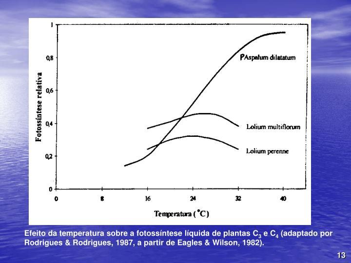 Efeito da temperatura sobre a fotossíntese líquida de plantas C