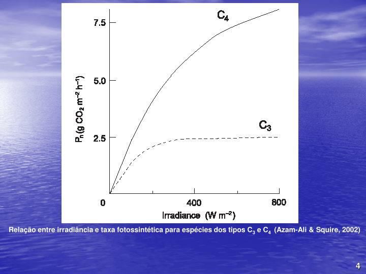 Relao entre irradincia e taxa fotossinttica para espcies dos tipos C