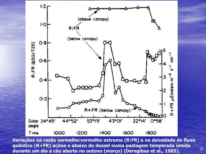 Variaes na razo vermelho:vermelho extremo (R:FR) e na densidade de fluxo quntico (R+FR) acima e abaixo do dossel numa pastagem temperada mida durante um dia a cu aberto no outono (maro) (Deregibus et al., 1985).