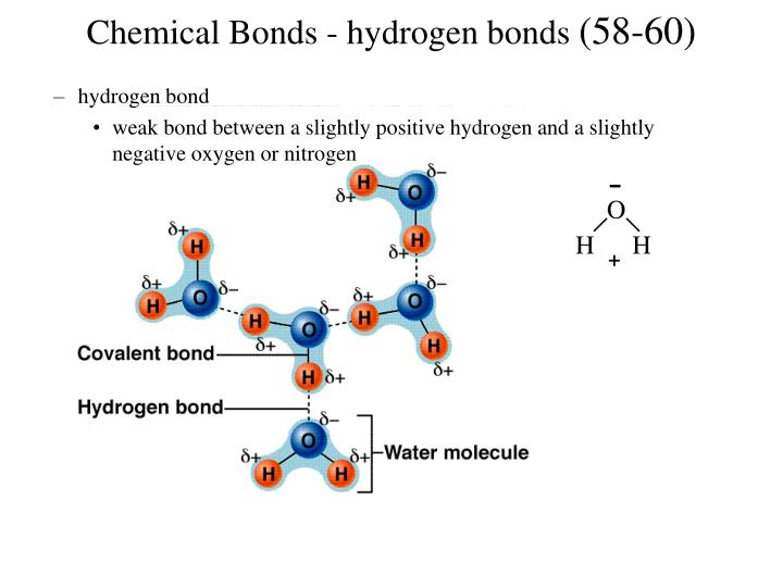Chemical Bonds - hydrogen bonds