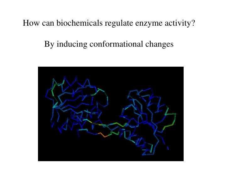 How can biochemicals regulate enzyme activity?