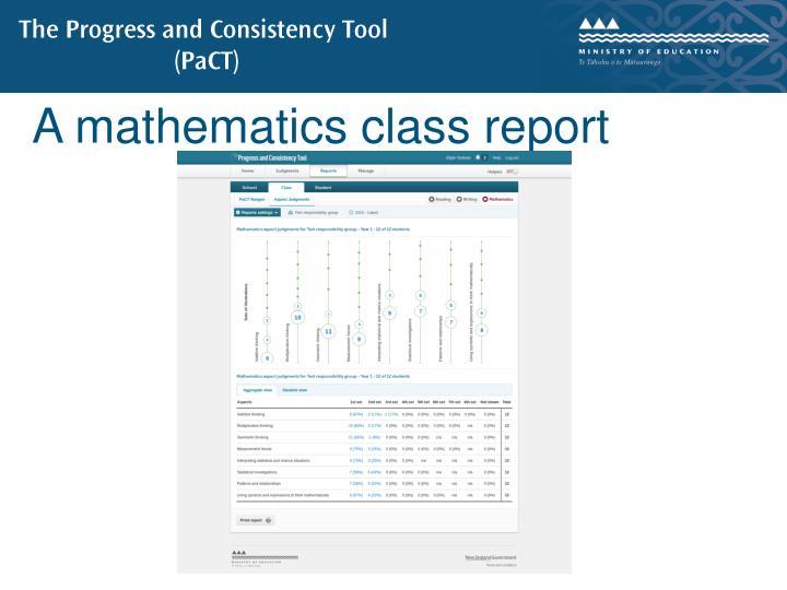 A mathematics class report