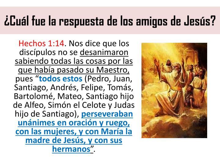 ¿Cuál fue la respuesta de los amigos de Jesús?