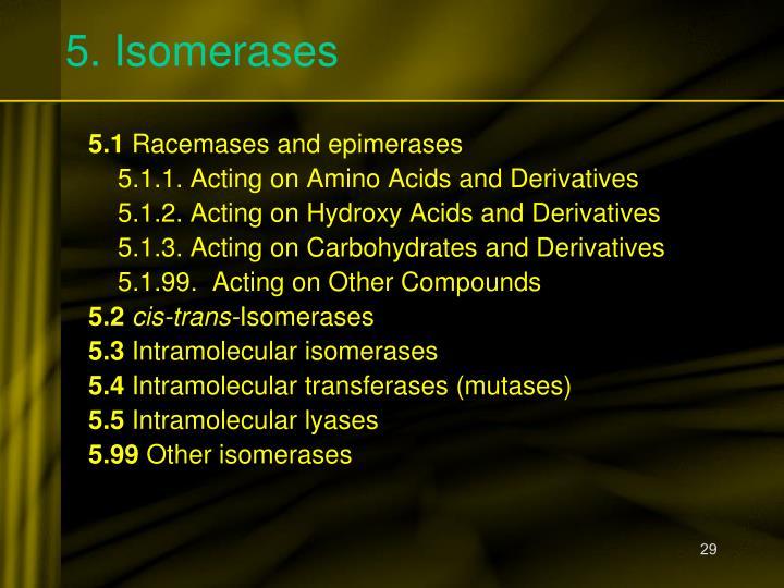 5. Isomerases