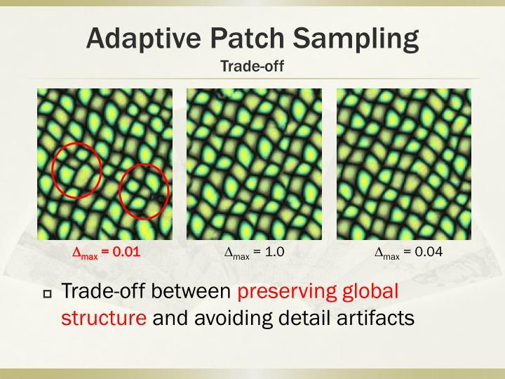 Adaptive Patch Sampling